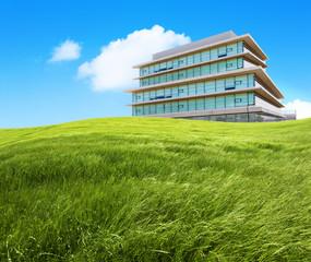 Hierba verde y edificio de oficinas. Ecología y empresa