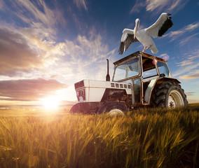 Campos de trigo, aves exóticas y tractor.Viaje Rural