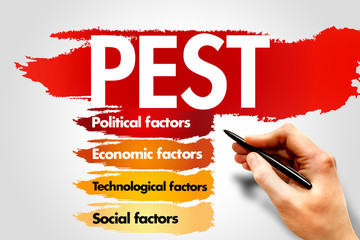 PEST Business analysis, business concept