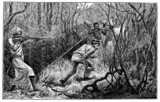 Victorian engraving of an ambush in the African jungle poster