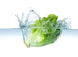 salad splash
