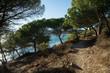 Wandeerweg am Cap Lardier, Südfrankreich
