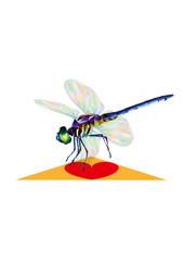 llustration of a dragonfly