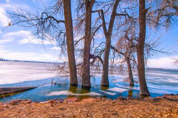 Winter Shore at Barr Lake 1
