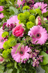 Pink Roses And Gerberas - Mothers Day - Celebrations