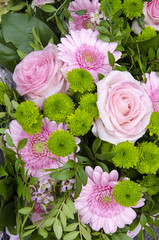 Pink Roses And Gerberas - Valentines Day - Celebrations