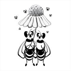 due api  si riparano sotto una margherita