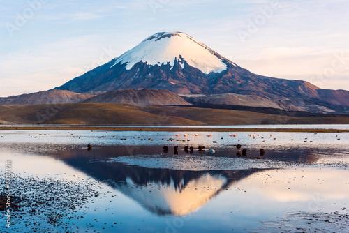 Snow capped Parinacota Volcano odzwierciedlenie w Lake Chungara, Chile