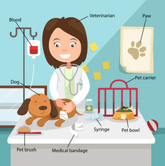 The Idea of Female Veterinarian Curing the Dog with Related Voca