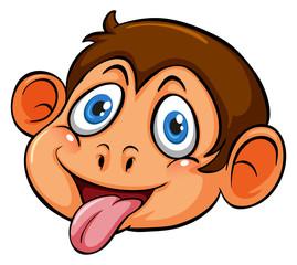 A head of a playful monkey
