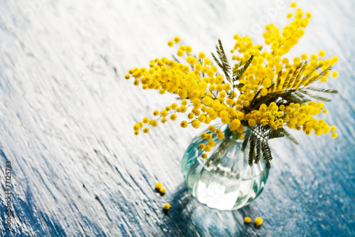 Bouquet of mimosa (silver wattle) in vase on wooden background