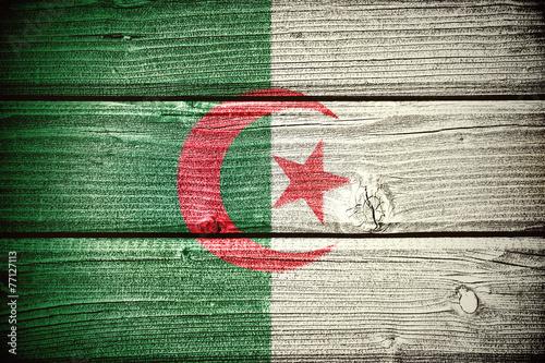 Tuinposter Algerije Flag of Algeria