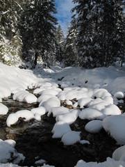 bach im winter