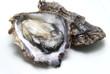 Leinwanddruck Bild - 生牡蠣の剥き身