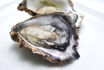 生牡蠣の剥き身