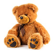 Toy teddy bear - 77135126