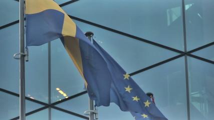 Vilnius. Skyscraper and EU Flags_10.mov