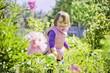 Little girl watering the summer garden