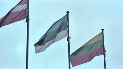 EU flags.mov