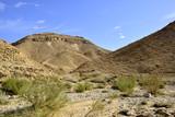 Nahal Zafit landscape in Negev desert. poster