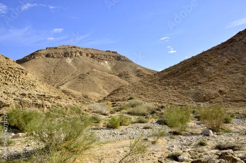 poster of Nahal Zafit landscape in Negev desert.