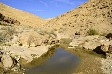 Nahal Zafit after flood in Negev desert.