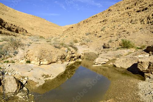 poster of Nahal Zafit after flood in Negev desert.