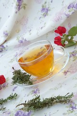 Summer savory herbal tea