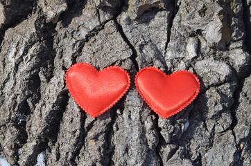 Сердечки на дереве.