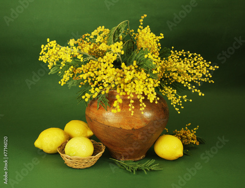 Obraz na Szkle Still life with mimosa bunch and lemons