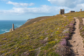Cornwall, England - Wheal Coats cliff top mine, St Agnes