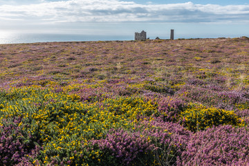Cornwall, England - Wheal Coats mine at St Agnes