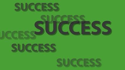 Business success text on green screen