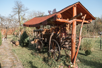 old horse cart decorated with onion ropes in a garden