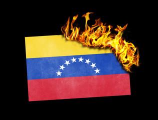 Flag burning - Venezuela