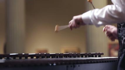 xylophone concert