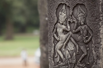 Apsara cambogia