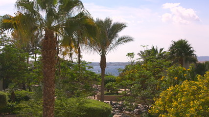 beautiful hotel Egypt