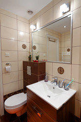 Bathroom toilet corner in vertical view