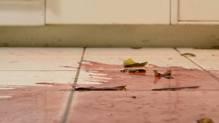 A wine bottle falling to the floor and breaking, slow motion