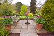 English flagged garden with terracotta planters in early spring. - 77178170