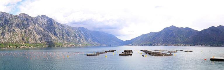 Aquaculture Montenegro