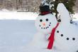 Snowman - 77191943