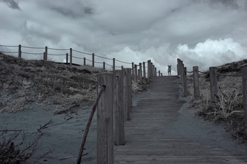 Dune and walkway with a dog