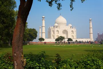 Taj Mahal Mausoleum with clear blue sky, Agra, India