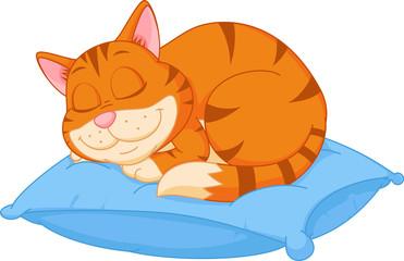 Cat cartoon sleeping on a pillow