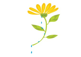 kwiatek,smutek,płacz,rosa