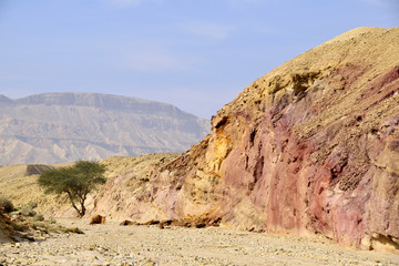 Small Crater landscape in Negev desert.
