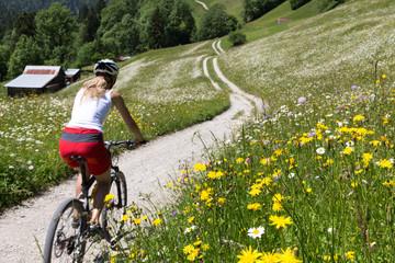Mountainbiken Wetterstein