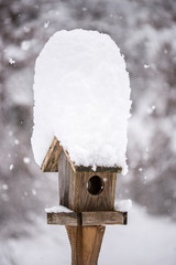 A snow covered bird house in winter